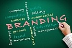 Branding and Market Message