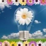 Entrepreneur-ideas