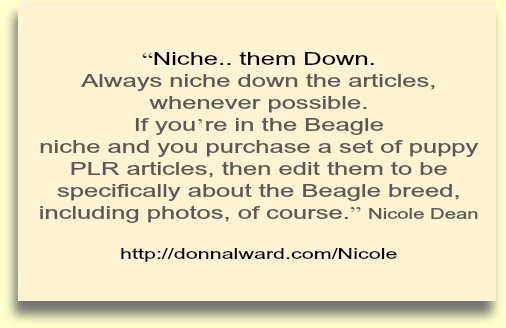 PLR-with-your-blog